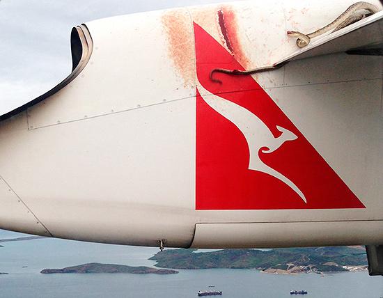 Cobra no avião
